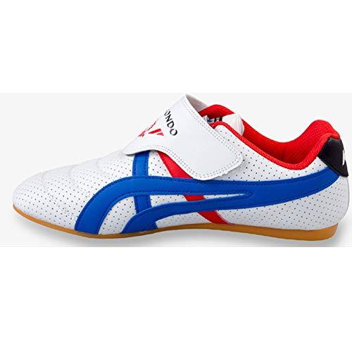 Meng Taekwondo Shoes, Children Martial Arts Sneaker Lightweight Sport Shoes for Boxing Karate Kung Fu Tai Chi Training (Color : White, Size : 41)