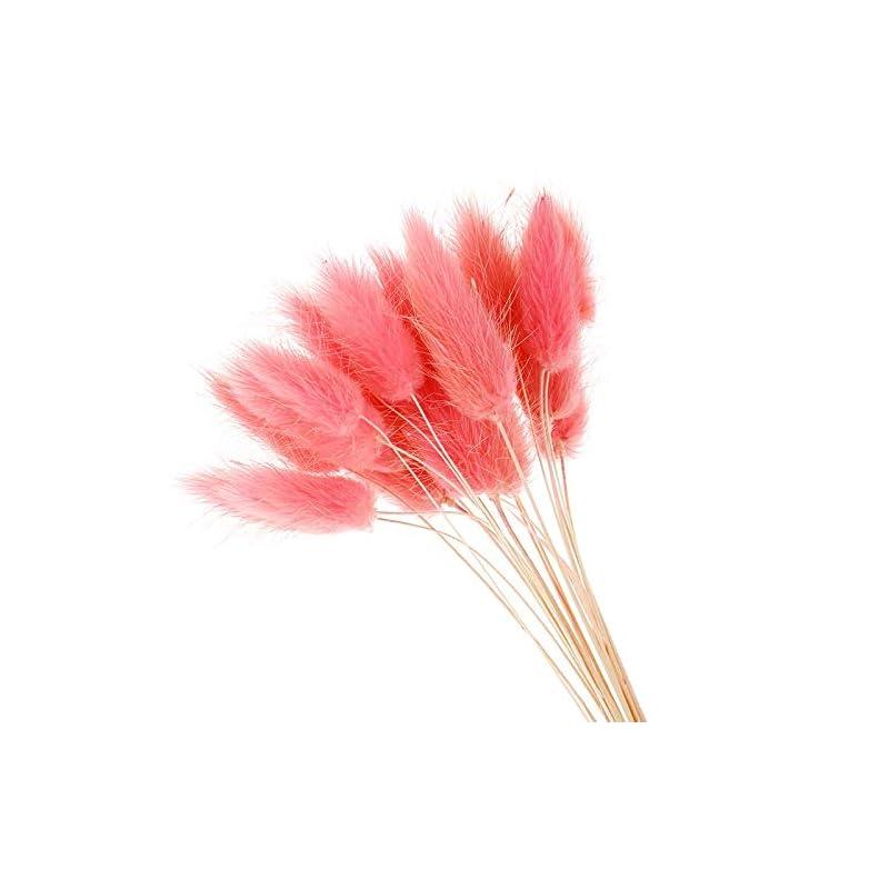 silk flower arrangements aisj 20pcs artificial flowers natural dried flowers lagurus colorful fake rabbit tail grass ovatus foxtail bouquet long bunches (color : g)