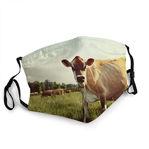Jersey Cow Face Mask Washable Anti Filter Christmas Fabric Face Covering Mask Reusable Printed Christmas