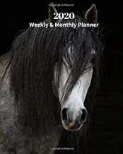 2020 Weekly and Monthly Planner: Black and White Horse - Monthly Calendar with U.S./UK/ Canadian/Christian/Jewish/Muslim Holidays– Calendar in Review/Notes 8 x 10 in.- Horse Animal Nature