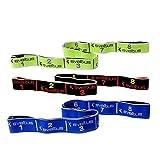 Sveltus - Juego de 3 cintas elásticas de entrenamiento (fuerza de 10, 20 y 30 kg) Kombi mit 3 Stärken