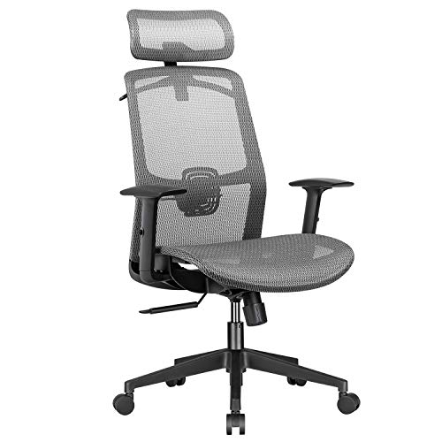 Furmax Ergonomic Office Executive Mesh Seat High Back Computer Desk Adjustable Headrest Lumbar Support Armrest Rolling Task Chair with Clothes Hanger, Grey