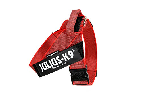 Julius-K9 IDC Color & Gray Belt Harness for Dogs, Size 3, Red-Gray