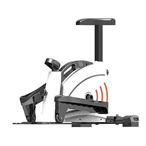 Home Sport Ellittici 2-In1 Bike-Fitness Cardio Workout Machine Attrezzo per Dimagrire Esercizi Fitness,Ellittica Cross Trainer Attrezzo per Esercizi 120Kg TDD