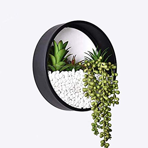 Ecosides Wall Mounted Planter Wall Hanging Planters Metal Plant Terrarium for Indoor Planter, Air Plant Holders Decorative Morden Circle Iron Vase for Succulent Indoor Wall Decor(12' H, Black)