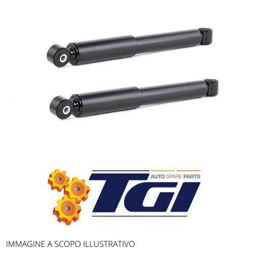 TGI - 2 AMMORTIZZATORI POSTERIORI FIAT PUNTO 188 DAL'99 AL 2012 DOPPIO TUBO A GAS