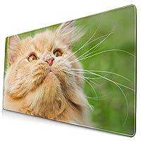 マウスパッド 大型 ゲーミングマウスパッド でかい キーボードパッド 猫 ネコ 写真 緑 芝生 遊び ゴム底 光学マウス対応滑り止め 耐久性が良い おしゃれ かわいい 防水 オフィス最適 適度な表面摩擦 40x75cm
