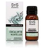 S&S Cosmetica natural ESENCIA BRUMAROMA sys EUCALIPTO MENTOLADO 50 Ml