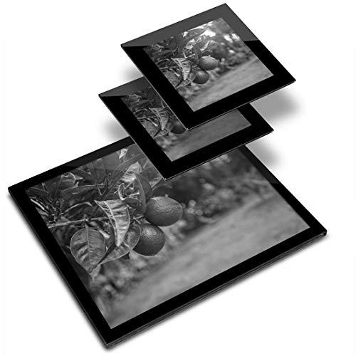 Destination Lot de 2 sets de table en vinyle 20 x 25 cm et 2 dessous de verre 10 x 10 cm – BW – Citrus Fruits tilleul/tilleul/fruitier/Tapis de salle à manger/lavable/imperméable #37618