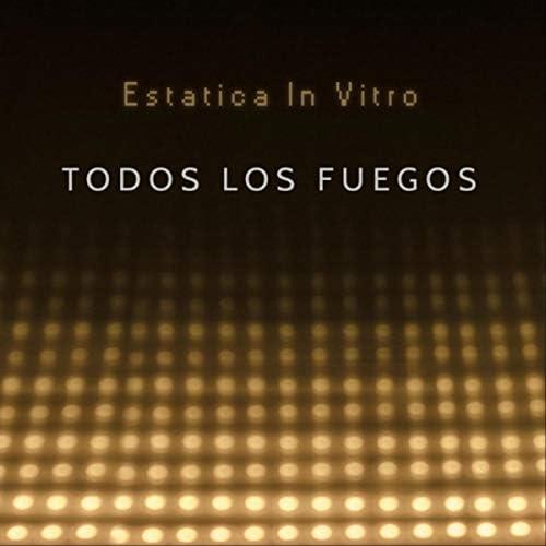 Estatica in Vitro