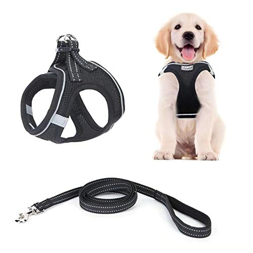 Puppy Harness and Leash kit, Adjustable Walk-in pet Harness, Dog Vest kit with Reflective and Breathable Cushioning pet Vest Belt, Suitable for Small and Medium pet Vests M: 15 inches to 15.7 inches
