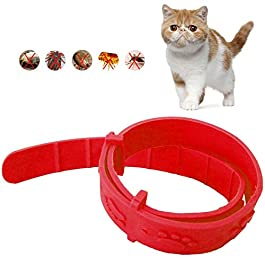 Tick and Flea Collar for Cats,Small Pet Adjustable Waterproof Collar Natural Safe Effective Removal Fleas, Lice, Mites, Mosquitoes