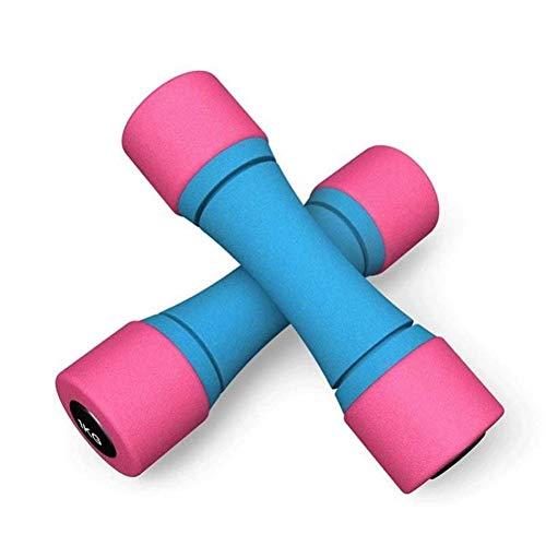 Haltères d'entraînement féminin Fer Haltère Matériaux de construction hommes Petite maison Haltère Paire De Fitness Equipment résistant à l'usure dames pratique bras Muscle Yoga haltère bleu Exercice