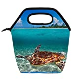 Bolsa de almuerzo portátil Caja de almuerzo de alta capacidad Paquete de comida para trabajo de oficina Viaje escolar Tortuga de mar verde en el Caribe mexicano