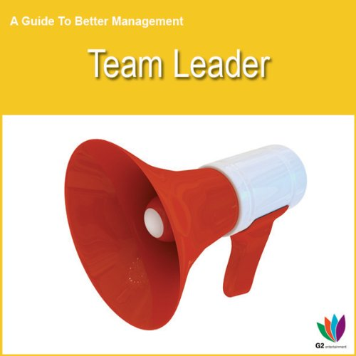 Team Leader audiobook cover art
