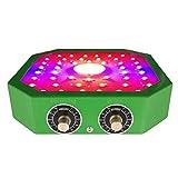 QIDIAN Impianto Luce, 1100W Principale coltiva Le luci con Spectrum Regolabile e intensità della Luce, Doppio Chip Full Spectrum Serra Coltivare Lampade per idroponici Indoor Plants Veg e Fiore