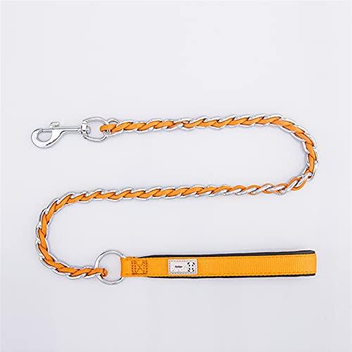 JHGJHG Accesorios de Cuello de Perro de Acero Inoxidable Perro Correa de Entrenamiento Cuerda Cubierta Cuerda de Pet Collar Accesorios DE Perro (Color : Blue, Size : M Within 20 kg Pets)