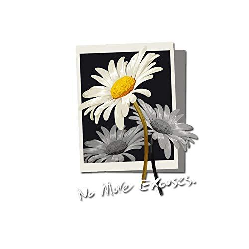 WBNCUAP Plancha en la Letra Flower Parches para la Ropa DIY Applique Transferencia de Calor Vinyl Thermo Pegatinas Rayas en Ropa Termal Press (Color : 17x22cm)