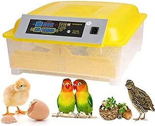 egg tray for incubator