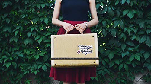 wangsheng Painting by Numbers Paint Number Kits Digital Linen Canvas Wall Art Artwork Paintings Decor Decorations (16X20 In) no frame - suitcase,girl,vintage,vogue,travel