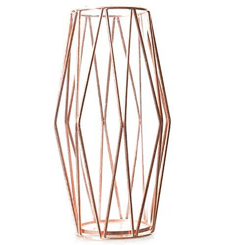 DEDC Vaso da fiori in vetro con supporto in metallo color oro rosa, vaso da fiori per piante idroponiche, centrotavola per decorazione casa e ufficio