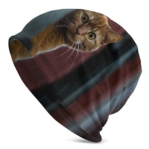 Meiya-Design Gorro de Lana Suave Unisex con diseño de Gato espía