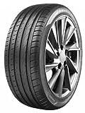 Aptany 12059 Neumático para Verano Turismo, 205/50 R17 89W, Negro