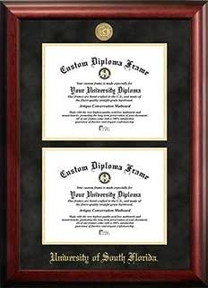 University of South Florida Double Degree Diploma Frame