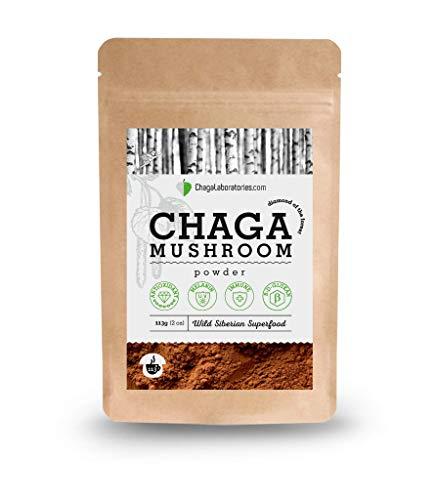 ChagaLaboratories - Chaga Pulver aus sibirischer Wildsammlung als Nahrungsergänzungsmittel, 100% Chaga Pulver, 113 Gramm