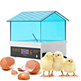 Egg Incubator, Mini Digital Egg Hatcher Poultry Hatcher Clear Temperature Control for Chicken