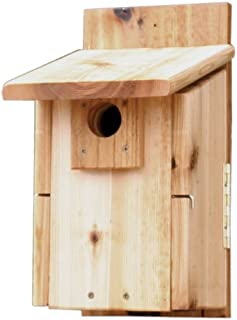 Stovall 2HUW Western Mountain Bluebird House
