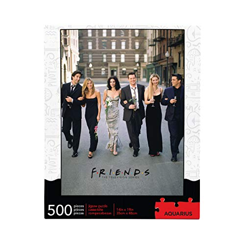 AQUARIUS Friends Wedding Puzzle (500 Piece Jigsaw Puzzle) - Officially Licensed Friends Merchandise & Collectibles - Glare Free - Precision Fit - Virtually No Puzzle Dust - 14 x 19 Inches