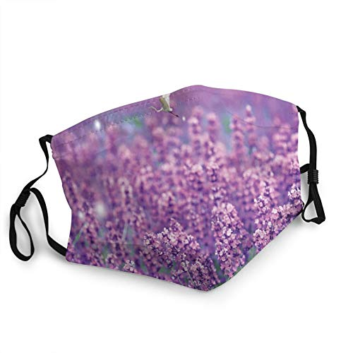 Flowers, Lavender 3D Printing Fashion Face Mask with Filter Pocket Washable Reusable Face Bandanas Balaclava for Men Women