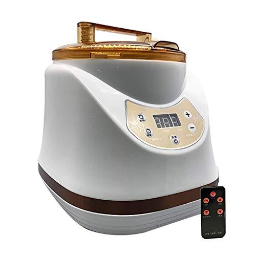 ZYQDRZ Sauna A Vapore, Generatore di Vapore per Sauna, Fumigatore Ad Alta Potenza da 2000 W con Telecomando, Utilizzato nella Spa del Centro Benessere Familiare,2L