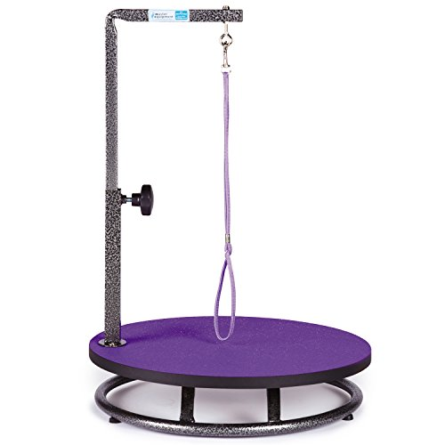 Master Equipment Small Pet Grooming Table, Purple