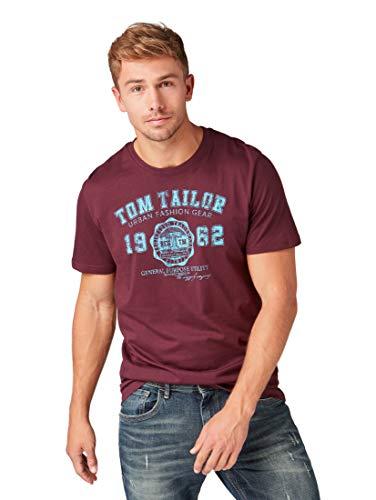 TOM TAILOR Herren Casual Logo T-Shirt, Violett (Gipsy Purple 10341), XX-Large