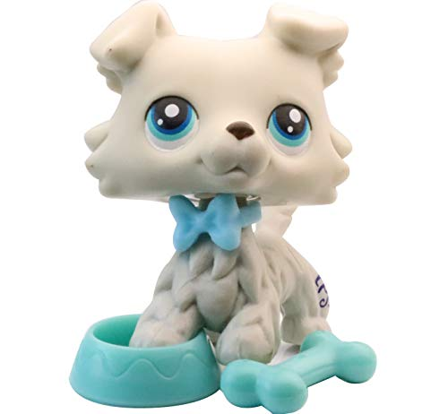 NA USA LPS Collie 363 Grey Blue Eyes Boy Rare Figure Dog Puppy with Accessories Kids Collection Gift Set