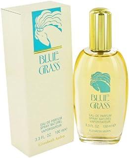 BLUE GRASS by Elizabeth Arden - Eau De Parfum Spray 3.3 oz