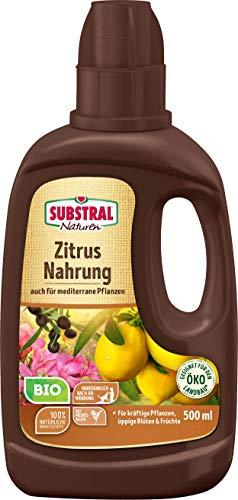 Substral Naturen Bio Zitrus und Mediterrane Pflanzen Nahrung, Organisch-mineralischer Flüssigdünger aus natürlichen Rohstoffen mit Meeresalgen, 500 ml