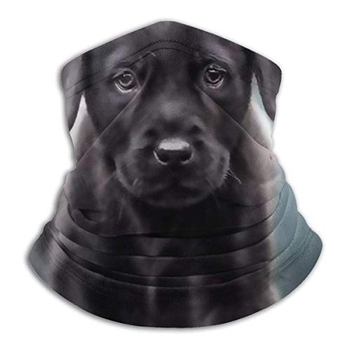 Negro Labrador Perro Cachorro Deporte Mascarilla Roja Brillo Labios Throw Pillow Sun-Proof...