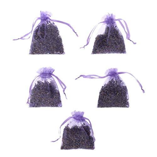 Carry stone 5 Stücke Echt Lavendel Organische Getrocknete Blumen Sachets Knospen Tasche Duft Lufterfrischer Auto Wohnkultur (Licht Lila)