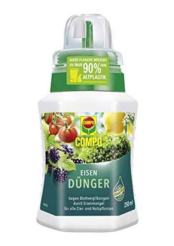 Compo Eisendünger, Spezialdünger für Zier- und Nutzpflanzen bei Blattvergilbungen, 250 ml