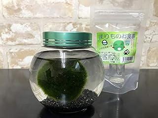 【西洋マリモ】丸瓶天然まりも3cm栄養剤セット