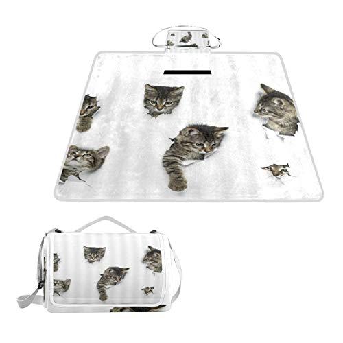 XINGAKA Couverture de Pique-Nique,Lovely Cat in Wallpaper Hole Fun Animals Group of Cute Kitten 3D Art Design Pet Picture,Tapis Idéale pour Plage Jardin Parc Camping
