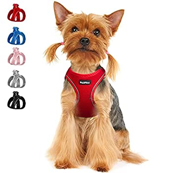 PetiFine Extra Small Step in Dog Harness and Leash Set Cat Harness and Leash Escape Proof All Weather Mesh Reflective Step-in Air Vest Harnesses for Puppy XXXS Red