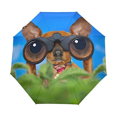 Dackel-Hundebrille, Blauer Himmel, automatisch, Winddicht, kompakt, automatisches Öffnen/Schließen, leicht, faltbar, für Damen und Herren und Kinder
