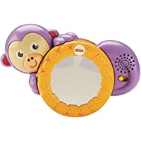Fisher-Price 1-2-3 Crawl Along Monkey