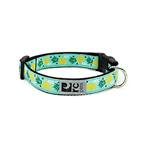 RC Pets 1 Inch Adjustable Dog Clip Collar, Large, Pineapple Parade