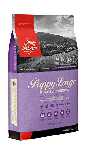 ORIJEN Puppy Dry Dog Food for Large Breeds, Grain Free, High Protein, Fresh & Raw Animal Ingredients, 13lb