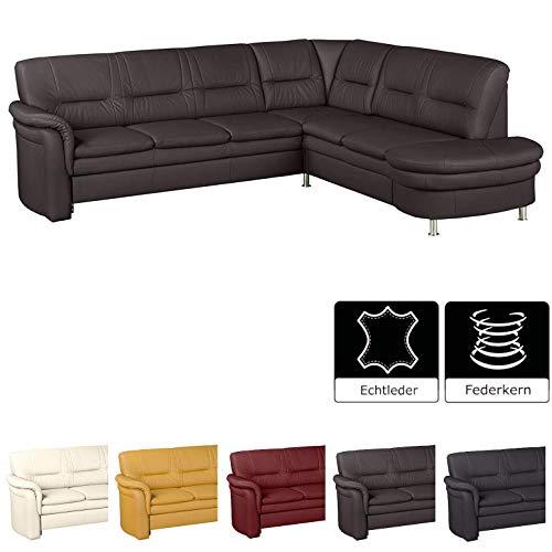 Cavadore Leder-Sofa Cassada mit Federkern / Großes Ecksofa in Leder mit Spitzecke / Chromfarbene Füße / Größe: 265 x 90 x 240 cm (BxHxT) / Bezug in 100 % Echtleder / Farbe: Mocca (dunkelbraun)